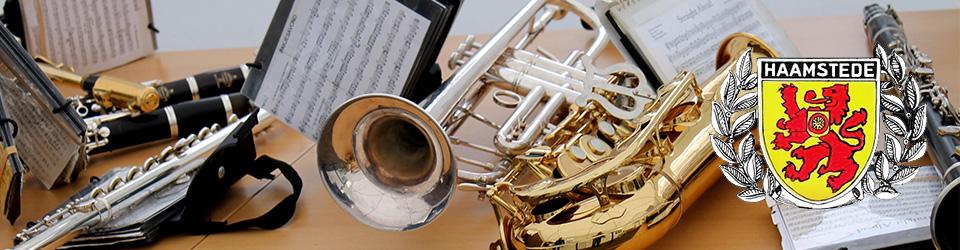Koninklijke Muziekvereniging Witte van Haemstede