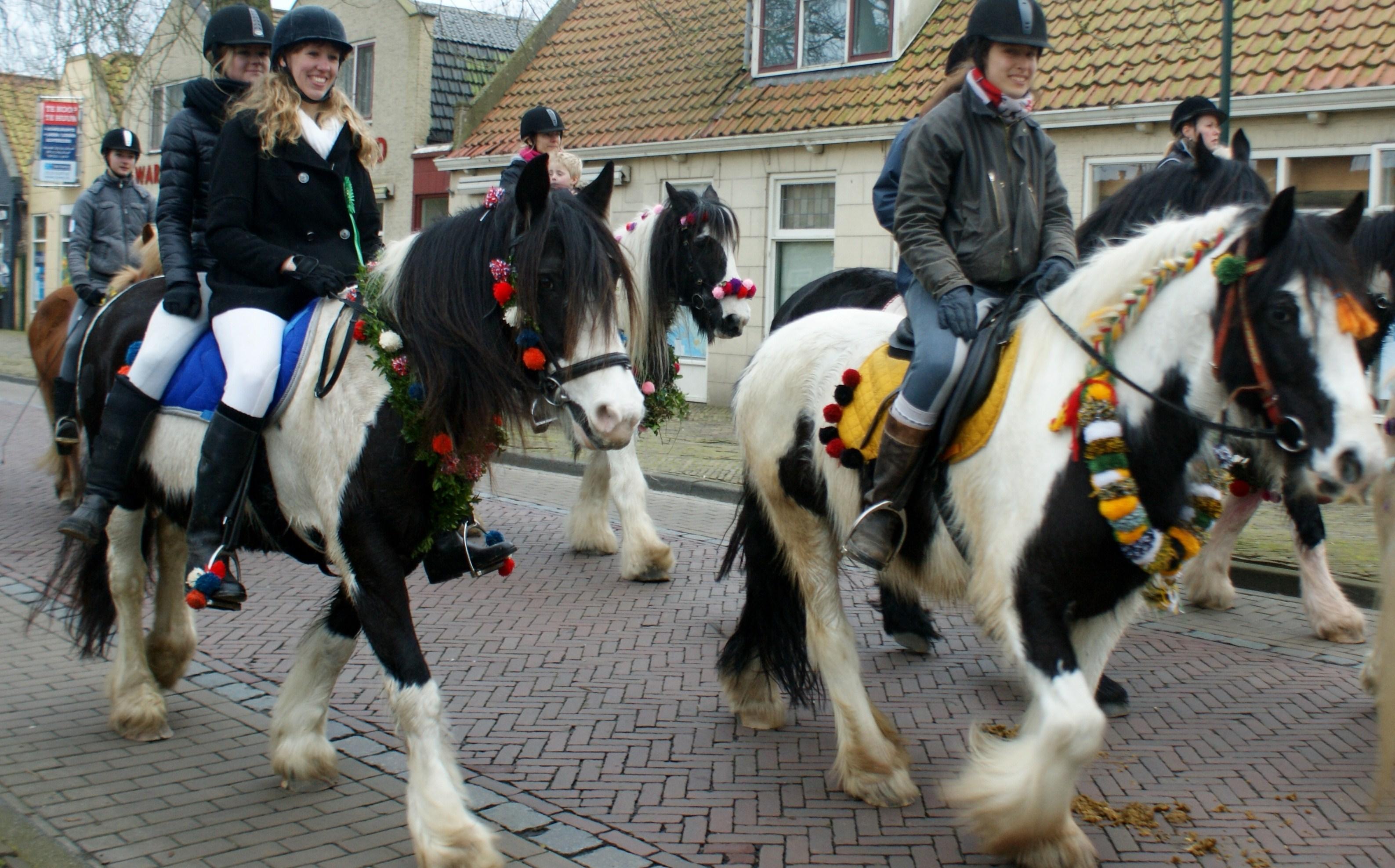 Strâo Paardenfeest 2014